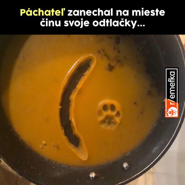 Meme mačka s klobásou.