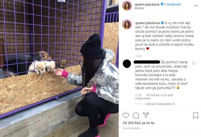 Plačková pomoc zvieratkám