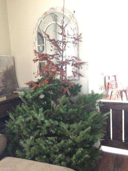 Ohorený vianočný strom